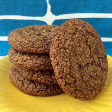 Chewy Low Carb Keto Molasses Cookies