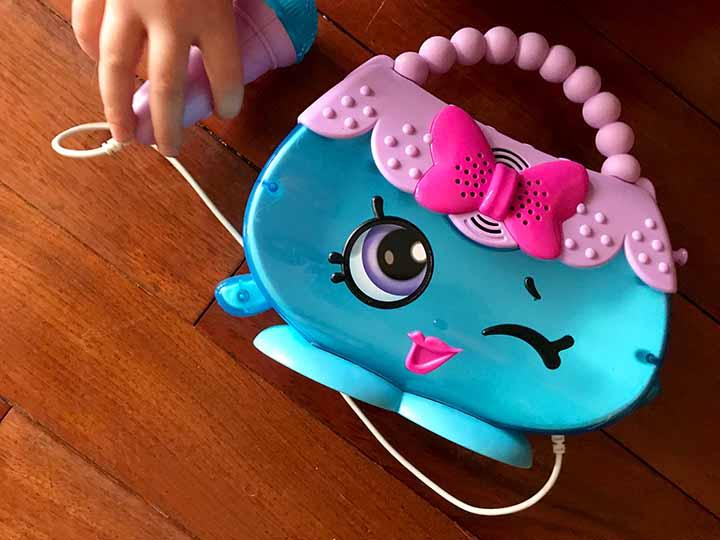 Purse Toy