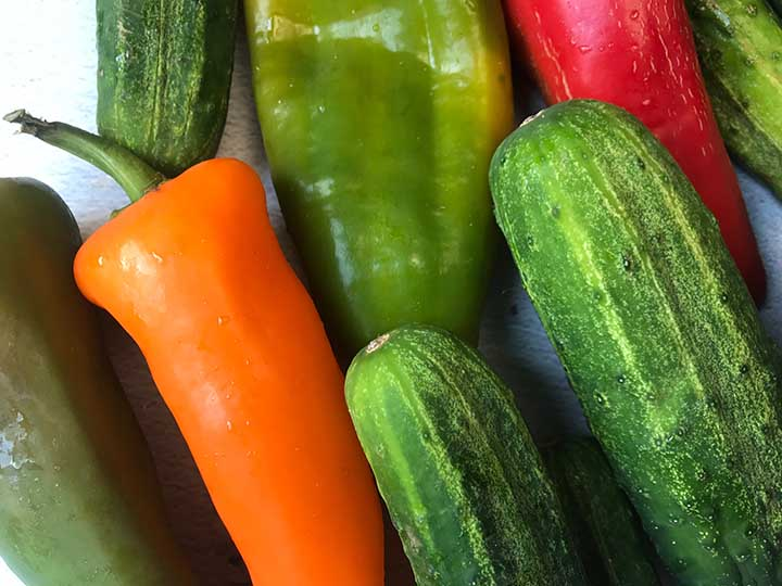 close up image of cucumbers and red, orange and green bell peppers