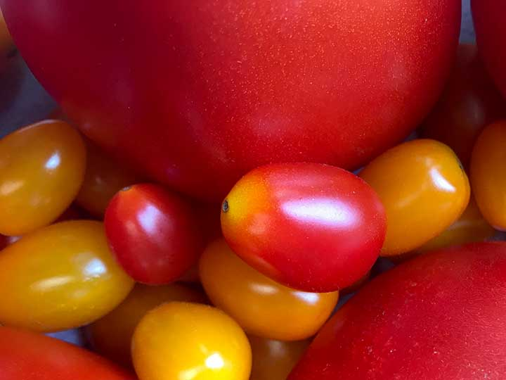 close up image of red and yellow grape tomatoes