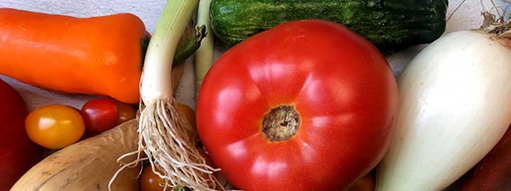 close up image of a tomato, bell peppers cucumbers and green onions