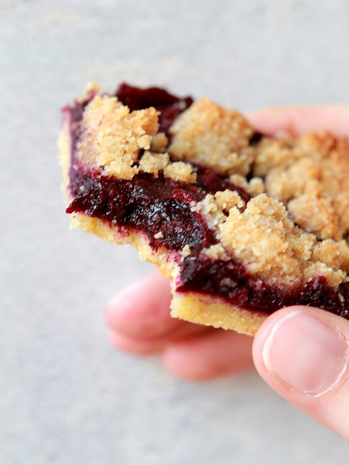 a hand holds a sugar-free blueberry bar