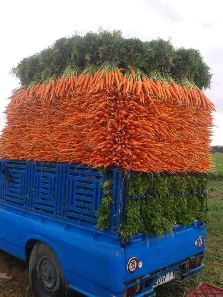a blue farm truck stacked with carrots