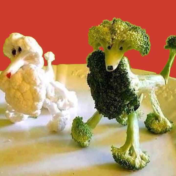 two dogs made out of broccoli and cauliflower