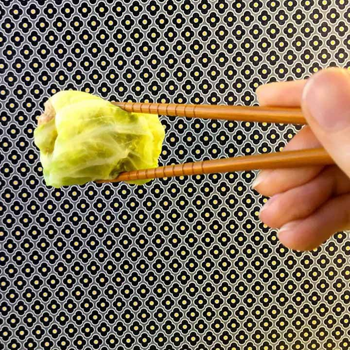 a hand holds a Pork Filled Cabbage Dumpling